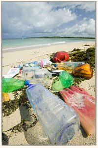 waste in Fiji Islands