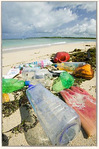 waste in Fiji Islands