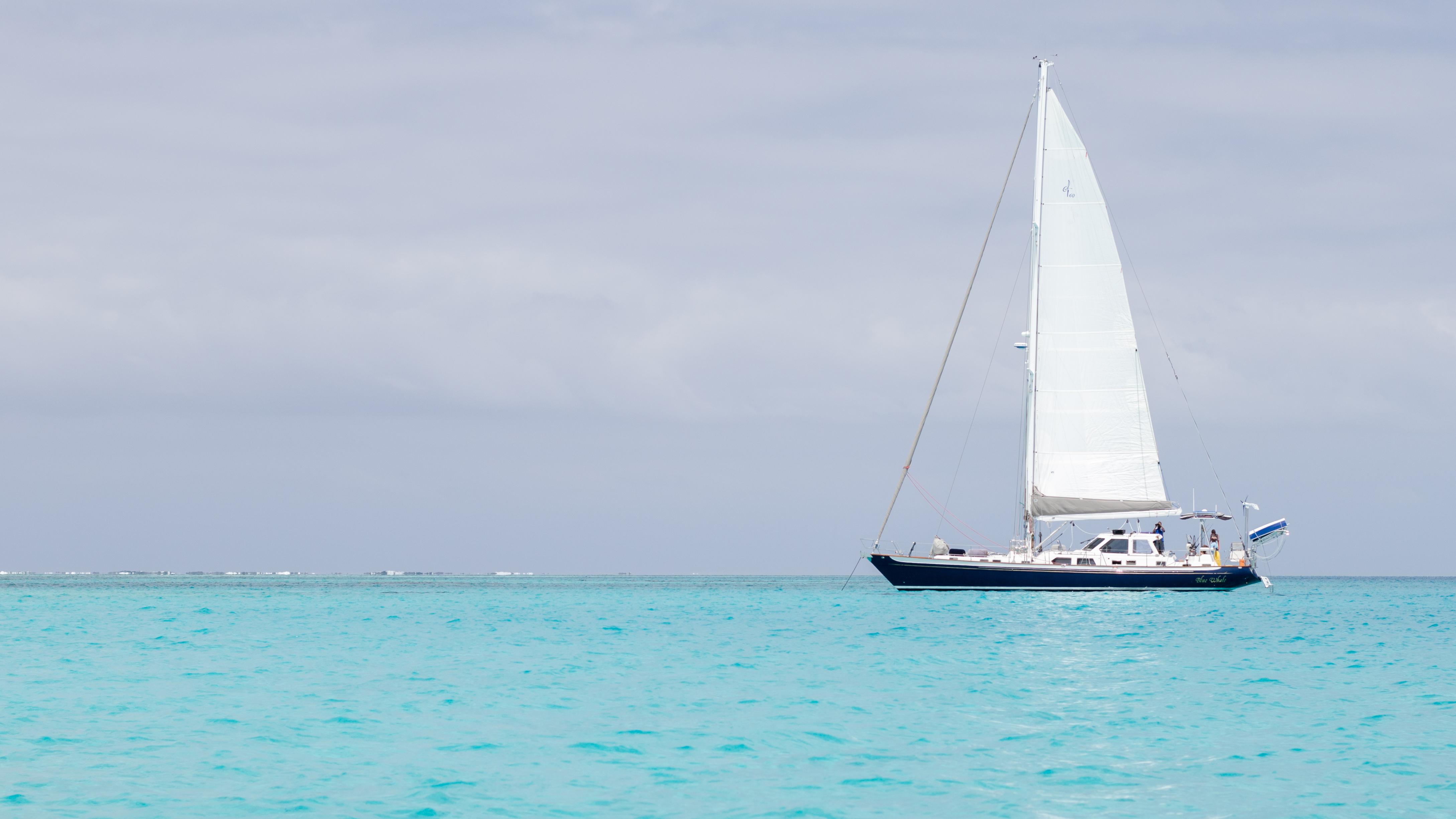 Beqa Lagoon Sand Cay_Blue Whale